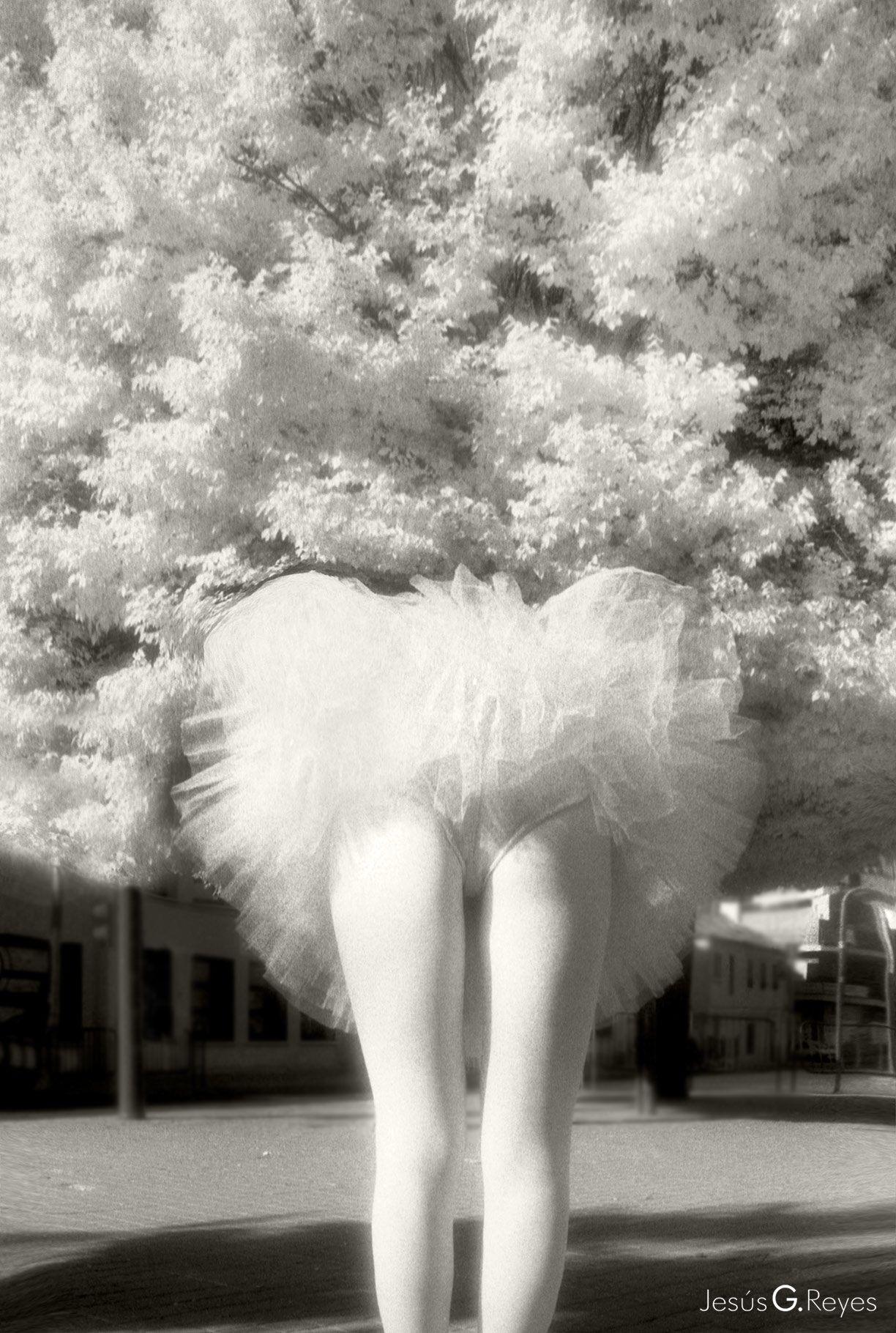 1st Prize. IV Photo Contest. Julio Cortazar. Madrid